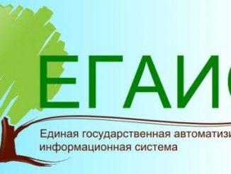 ЕГАИС ЛЕС - учет древесины и сделок